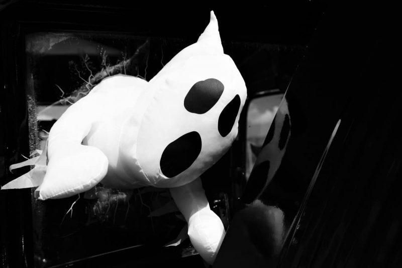 ¿Cuánto tiempo puede permanecer el colchón Casper en la caja? ¡3 mejores razones para conseguir uno!