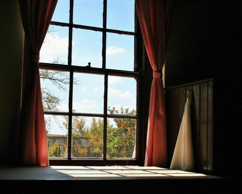 ¿Cómo oscurecer una habitación sin cortinas? ¡Las 5 mejores opciones!