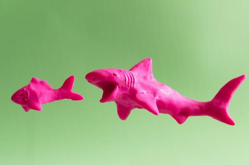 Cómo hacer una manta de tiburón de dos formas sencillas